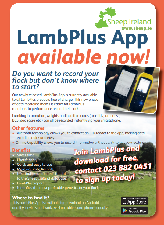 Download Sheep Ireland's latest Version of the LambPlus App